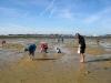 peche à pied pendant la grande maree